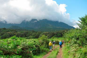 Mount Meru track