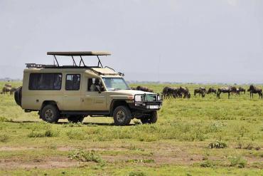 Tanzania Wild Side Camping Safari