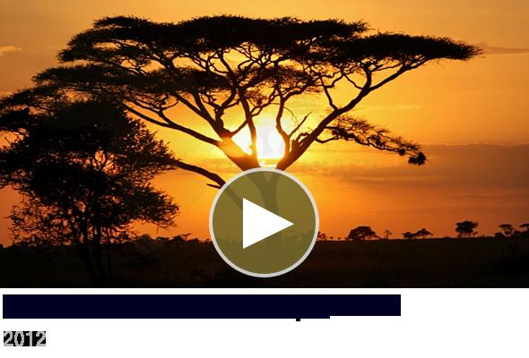 Safari with Tanzania-Experience Video