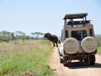 TZ_Serengeti_NP_vehicles_Taher