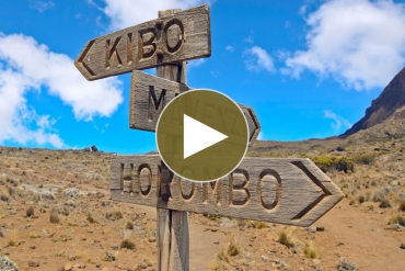 Kilimanjaro Trekking mit Tanzania-Experience