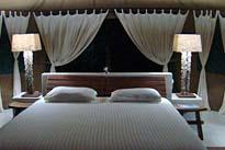 Luxus Safaris