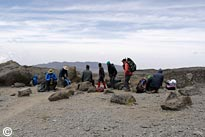 Lemosho Route + Zusatztag Trekking Gruppentour