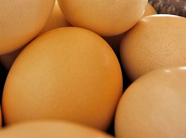 ostrich-eggs-(1-of-1)