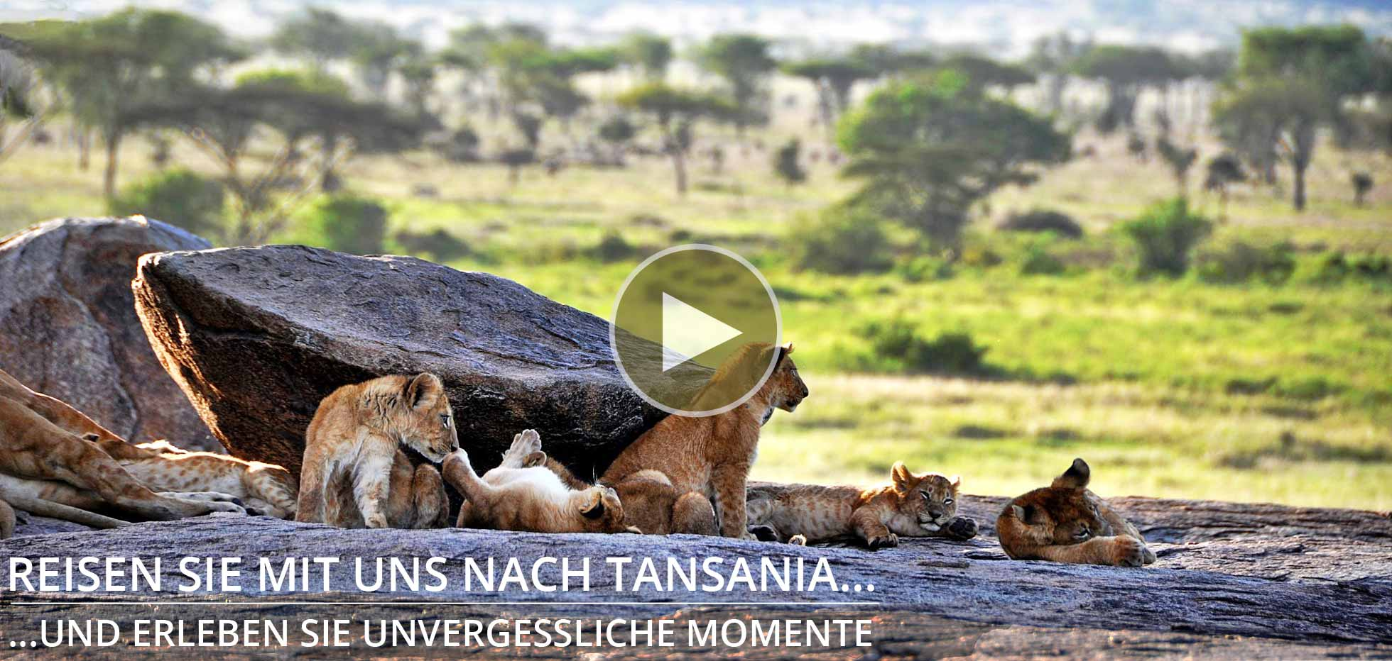 Tansania Experience Trekking und Safaris