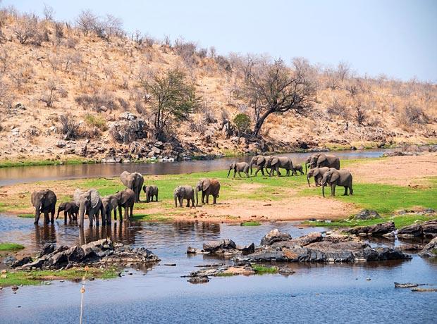 Ruaha Nationalpark Tansania