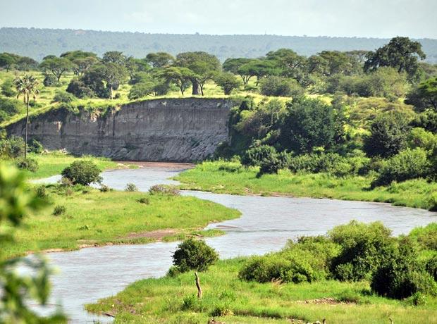 Tarangire Fluss in der Regenzeit