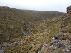 kilimanjaro-day-trip-gallery-4