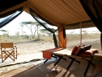 Olakira-Camp-south-2012-guest-tent-Lounger-011
