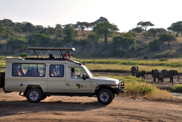 Songa Tanzania Lodge Safari