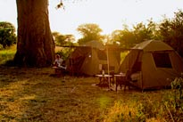 Serengeti Mobile Explorer Camp