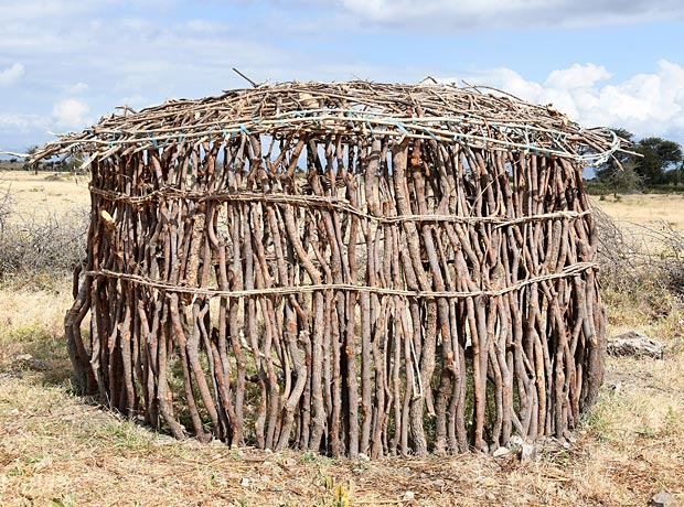 Maasai Huts Who Builds Them And How Tanzaniaexperience. Interestingly The Men Are Not Responsible For Building Houses But It's Women Who Take Charge Of This Duty Only Pregnant And Elderly. Wiring. Diagram Of A House A Manyatta At Scoala.co