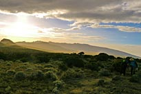 Kilimanjaro National Park Shira plateau