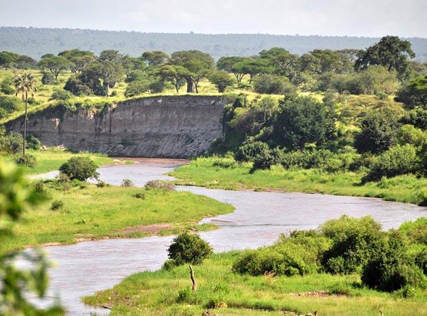 Tarangire river Tanzania